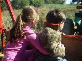 The Hay Ride